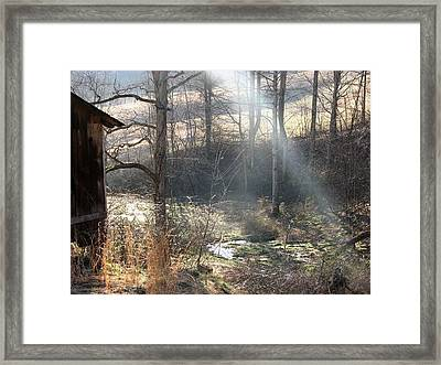 Secret Hollow Framed Print by Carol Hoffman