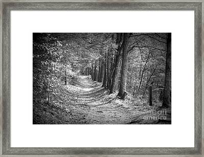 Secret Pathway Framed Print