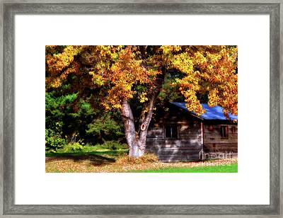 Secret Place Framed Print by Molly McPherson