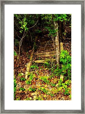 Secret Stairway Framed Print