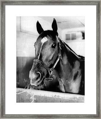 Secretariat Vintage Horse Racing #18 Framed Print