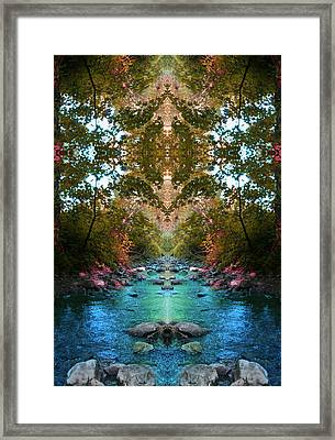 Secrets Of Nature Framed Print by Tina Vrankar