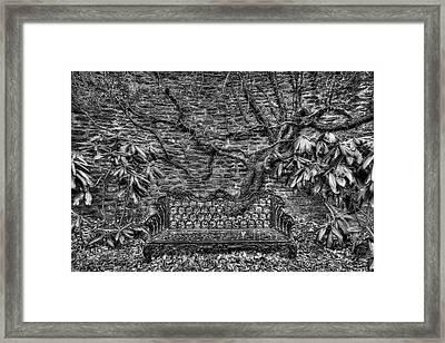Secrets Of The Garden Bw Framed Print