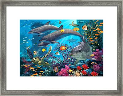 Secrets Of The Reef Framed Print by Steve Read