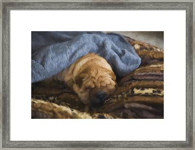 Security Blanket Framed Print