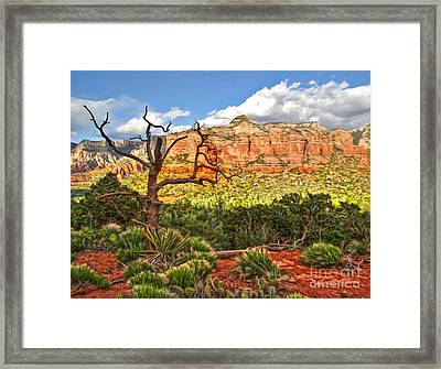 Sedona Arizona Dead Tree - 03 Framed Print by Gregory Dyer
