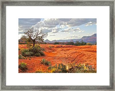Sedona Arizona Dead Tree - 04 Framed Print by Gregory Dyer