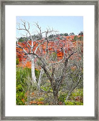 Sedona Arizona Dead Tree Framed Print by Gregory Dyer
