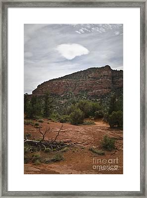 Sedona Landscape No. 2 Framed Print by David Gordon