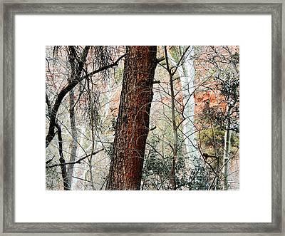 Sedona Layers Framed Print