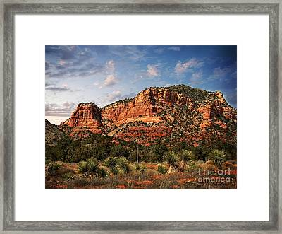 Framed Print featuring the photograph Sedona Vortex  And Yucca by Barbara Chichester