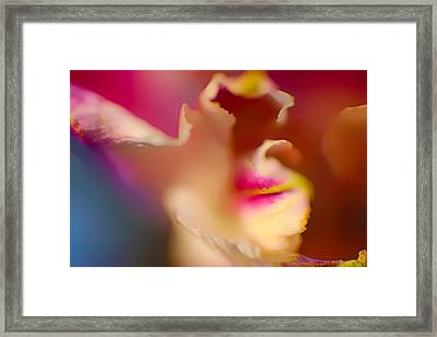 Seductive In Pink And White Framed Print