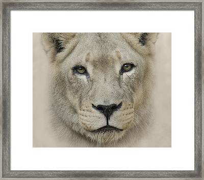 Framed Print featuring the photograph See Me by Cheri McEachin