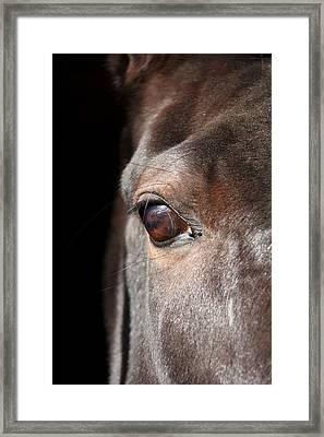 See My Soul Framed Print by Davandra Cribbie