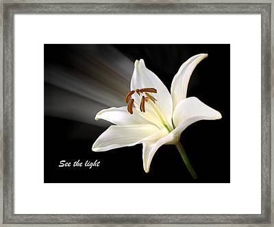 See The Light Framed Print by Gill Billington