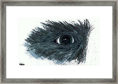 See What I See Framed Print by Pamela Blayney