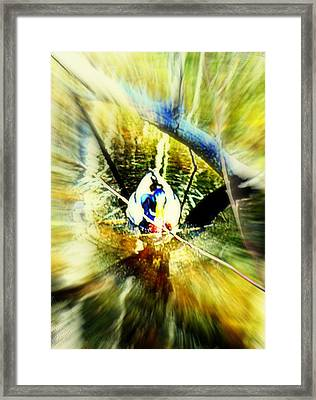 I Came To See You In My Pond But You Was Gone  Framed Print by Hilde Widerberg