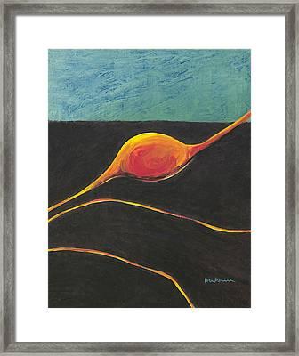 Seed Nucleus Framed Print