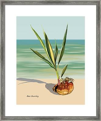 Seedling Floating Ashore Framed Print