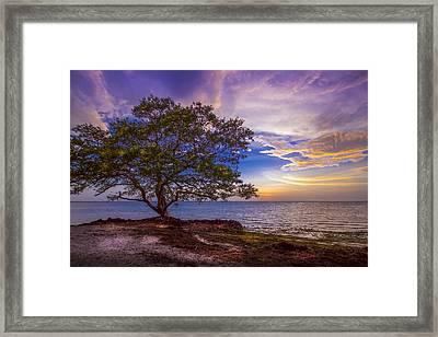 Seeing Is Believing Framed Print