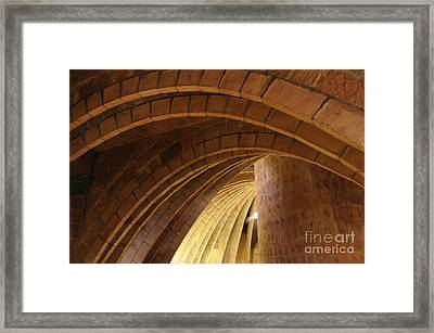Seeing The Light Framed Print by Cindy Lee Longhini