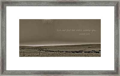 Seek And Find Framed Print