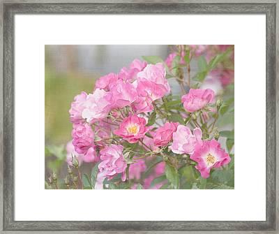 Seek Beauty Framed Print
