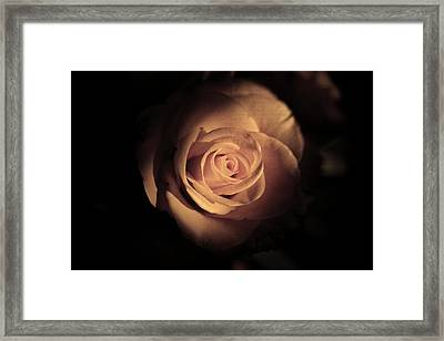Seek The Light Framed Print by Kim Lagerhem