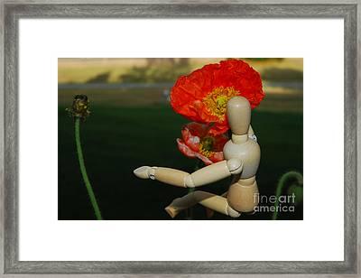 Seeking A Yellow Brick Road Poppy Number Three Horizontal Framed Print by Heather Kirk
