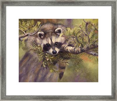 Seeking Mischief Framed Print by Lucie Bilodeau