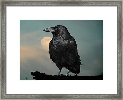 Seeking Poe Framed Print by Hazel Billingsley
