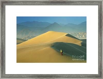 Seeking Solitude  Framed Print by Bob Christopher