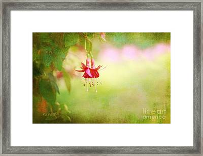 Seeking The Light Framed Print by Beve Brown-Clark Photography
