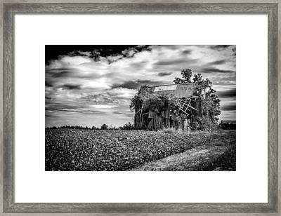 Seen Better Days Framed Print by Jeff Burton