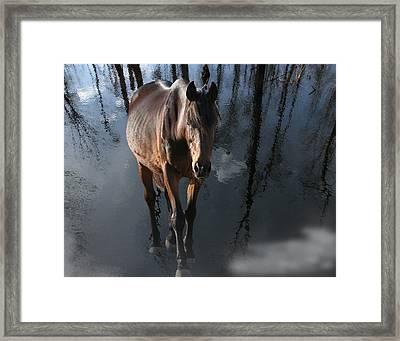 Seen Enough Framed Print by Joseph Tese