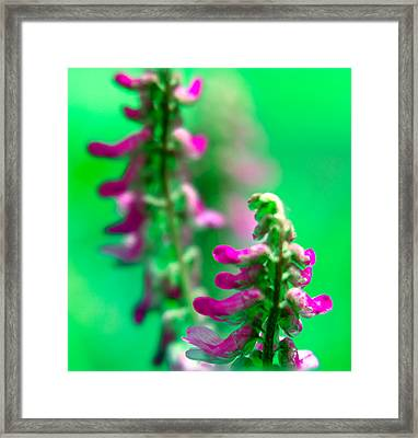 Seesaw Framed Print by Julian Cook
