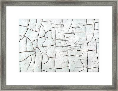 Segments Framed Print by Kjirsten Collier