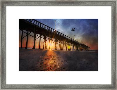 Seize The Day Framed Print by Betsy Knapp
