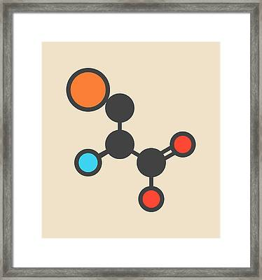 Selenocysteine Amino Acid Molecule Framed Print by Molekuul
