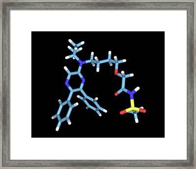 Selexipag Blood Pressure Drug Molecule Framed Print by Dr Tim Evans