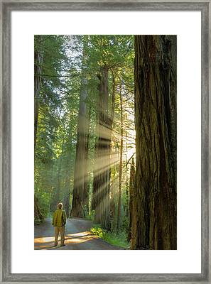 Self Portrait In God Rays Among Giant Framed Print by Chuck Haney