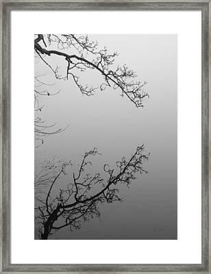 Self-reflection Framed Print by Luke Moore