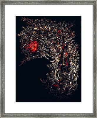 Self Signatures Until The Final Darkening Framed Print by R Johnson