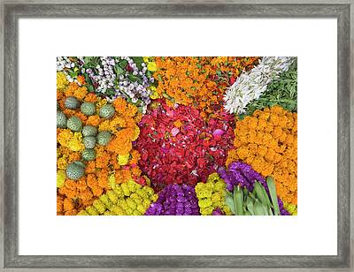 Selling Flowers For Diwali, Festival Framed Print by Keren Su