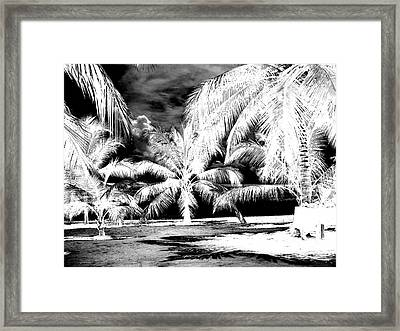 Selling Shells Infrared Extreme Framed Print