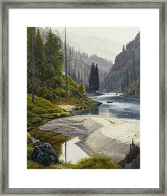 Selway River Framed Print