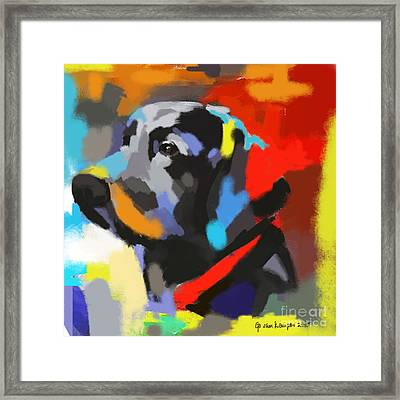 Dog Sem Framed Print by Go Van Kampen