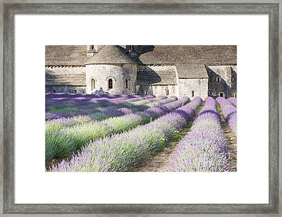 Senanque Abbey And Its Lavender Field - Provence - France Framed Print by Matteo Colombo