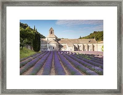 Senanque Abbey And Lavender Field - Provence - France Framed Print by Matteo Colombo
