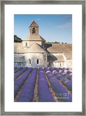 Senanque Abbey And Lavender Field In Provence - France Framed Print by Matteo Colombo